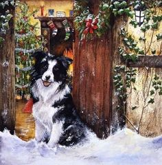 Border collie-watercolour-xmas card design