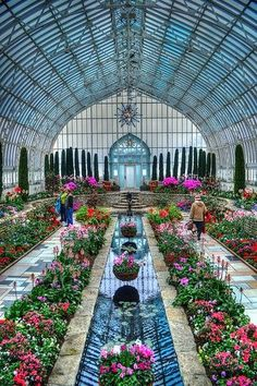 Como Park Conservatory, St. Paul, MN - seasonal beauty
