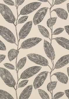 Komodo Leaves #wallpaper in #black and #flax from the Biscayne collection. #Thibaut