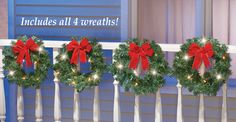 Lighted Holiday Evergreen Wreaths - Set of 4