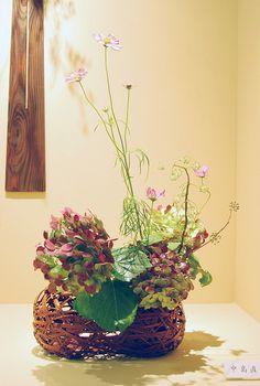 Ikebana Ohara in a bamboo basket with hydrangea | Flickr - Photo Sharing!