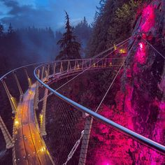 Capilano Cliff Walk with Christmas lights, Vancouver