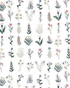 Flowers illustration tattoo sketch 68 ideas for 2019 Flower Tattoos, Small Tattoos, Flower Patterns, Flower Designs, Print Patterns, Pattern Flower, Pattern Print, Boho Pattern, Pattern Design