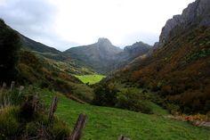 asturgeografic: Seronda en el valle de Saliencia