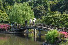 Shinjuku Gyoen National Garden CLOSED MONDAYS 200 YEN  Open Mar. 35 - Apr. 24