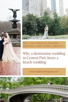 Why a Destination Wedding or Elopement in Central Park Beats a Beach Wedding Wedding Trends, Wedding Tips, Wedding Vendors, Wedding Planning, Perfect Wedding, Dream Wedding, Wedding Day, Central Park Weddings, Wedding Honeymoons
