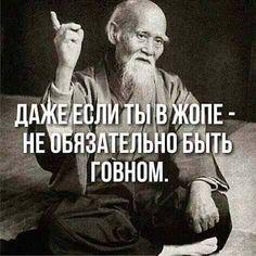 Ух ты, ну как же всё в точку! Кто со мной согласен? Love Sarcasm, Sarcasm Humor, My Mind Quotes, Life Quotes, Cool Words, Wise Words, Vodka Humor, Hello Memes, Russian Quotes