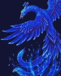 Phoenix bird tattoo blue 46 ideas for 2019 – Bird Supplies Phoenix Dragon, Phoenix Art, Phoenix Rising, Phoenix Bird Tattoos, Phoenix Tattoo Design, Magical Creatures, Fantasy Creatures, Phoenix Images, Vogel Tattoo