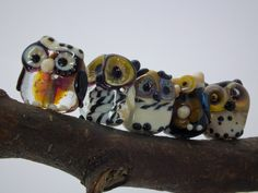 tiny forest owls... in double helix