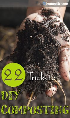 22 Tricks to DIY Composting! Check out the website, some girl tried a new diet and tracked her results