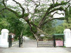 De ingang van de Penang Botanic Gardens