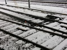 Japanese Trian rail with Snow