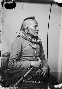 "As-sau-taw-ka ""White Horse"" Pawnee – 1868 (Antique photo of Native American) Native American Warrior, Native American Images, Native American Beauty, Native American Tribes, Native American History, American Indians, American Symbols, American Women, American Art"
