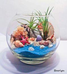 Awesome ocean terrarium