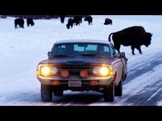 The Ranchero Returns Part 2! Alaska or Bust, the Sequel - Roadkill Episode 14 - YouTube