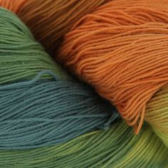 Araucania Yumbrel Yarn at WEBS | Yarn.com