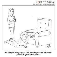 Privacy   Noise to Signal social media cartoons