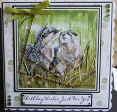 Card made from the British Wildlife DVD-rom Birthday Wishes, Birthday Cards, British Wildlife, Wild Hearts, Masculine Cards, Pet Birds, Sally, Handmade Cards, Card Ideas