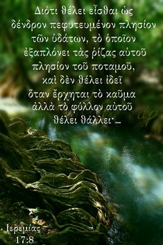 For he shall be as a tree planted by the waters, and that spreadeth out her roots by the river, and shall not see when heat cometh, but her leaf shall be green; Trees To Plant, Roots, Bible, River, Green, Plants, Movie Posters, Biblia, Tree Planting