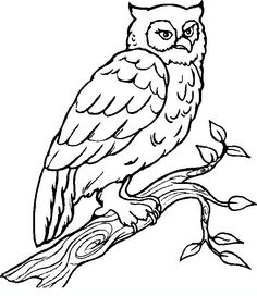 http://www.coloringpagesforadult.com/coloring_pages/dettagli_wood.php?id=142