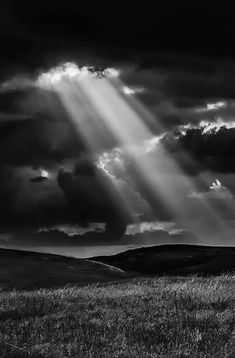 black and white Black And White Picture Wall, Black White Art, Photo Black, Black And White Pictures, Dark Landscape, Black And White Landscape, Black And White Aesthetic, B&w Wallpaper, White Sky