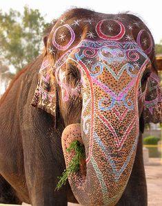 Indian elephant makeup by Al ajanabi, via Flickr