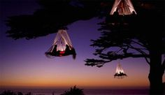 Acampando en un árbol, camping extremo o romántico