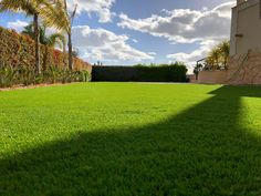 Artificial grass products are available for all garden solutions. Namgrass artifical grass is active in over 25 countries worldwide. Garden Solutions, Grass, Portugal, Golf Courses, Country, Artificial Turf, Rural Area, Grasses, Herb