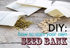 DIY: How to start a community seed bank This.