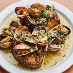 Food 53 Italian Seafood Recipes for the Feast of the Seven Fishes Shellfish recipes Feast Fishes FOOD Italian RECIPES Seafood shellfish recipes Fish Dishes, Seafood Dishes, Fish And Seafood, Seafood Pasta, Seafood Stew, Seafood Recipe For Christmas, Seven Fishes, Snack Recipes, Cooking Recipes
