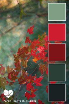 Color Palettes: Autumn Leaf Love — Paper Heart Design #autumn #fall #leaves #colorpalette #colorinspo #colorinspiration #teal #red #colorscheme #