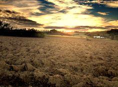 Fall fields in Umbria