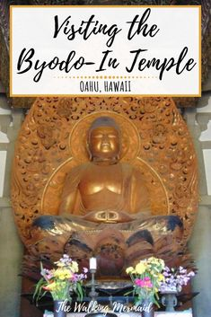 Learn more on this tour through the Byodo-In Temple in Oahu, Hawaii. This replica of the Japanese temple is very detailed and exquisite. Hawaii Travel Guide, Usa Travel Guide, Travel Usa, Travel Guides, Travel Tips, Budget Travel, Travel Photos, Oahu Hawaii Map, Hawaii Hikes