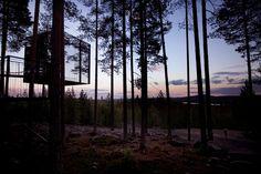 La Laponie, entre lodge design et hôtel perché dans les arbres, voici 3 spots incontournables
