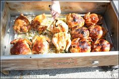 Chickens in La Caja China