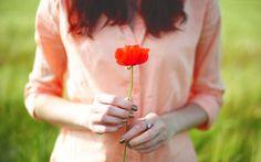 menina, papoila, flor vermelho, bokeh