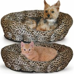 A cozy pet bed great for cats and small dogs