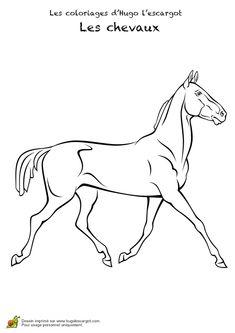 Dessin d'un puissant cheval de course sans ses équipements, à colorier