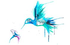 Hummingbird Skeleton Art Print Bird by PaintOutsidetheLines