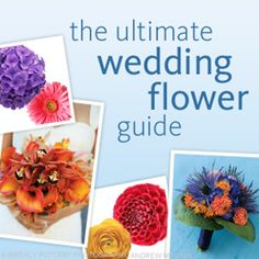 Your Guide to Wedding Flowers | TheKnot.com