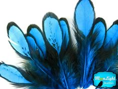 Moonlight Feather, Blue Laced Hen Feathers for Crafting 1... https://smile.amazon.com/dp/B008KS9AC8/ref=cm_sw_r_pi_dp_x_Ncohyb6FXXWTY