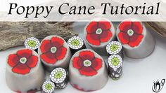A wide variety of video tutorials on polymer clay canes, with step by step instructions. Achieve success in every cane you try, from basic Ikats to advanced flowers. Polymer Clay Bracelet, Polymer Clay Ornaments, Polymer Clay Canes, Polymer Clay Flowers, Polymer Clay Pendant, Handmade Polymer Clay, Clay Earrings, Handmade Beads, Clay Art For Kids