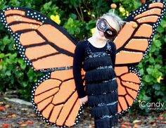 This is the best butterfly costume I've found...it is awesome! We're going to try for one just like it, or maybe with blue as a morpho.