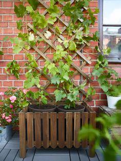 Jardinera y enrejado Askholmen de Ikea