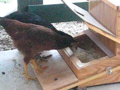How to Build A Treadle Chicken Feeder   Home Design, Garden & Architecture Blog Magazine