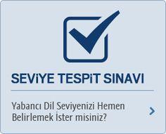 Seviye Tespit Sınavı Dil, Logos, Logo