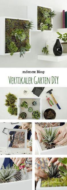 Vertikaler Garten für Innen selber machen, indoor gardening - leicht gemacht! Tolle DIY Idee! #indoorgardening
