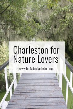 Top places to explore the beautiful Lowcountry of #SouthCarolina: James Island County Park, Caw Caw, Audubon Swamp Garden...