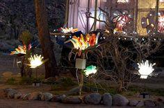 Dildo Garden by Randy Polumbo