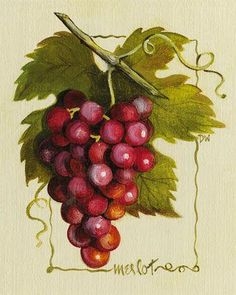 Grapes Cluster.